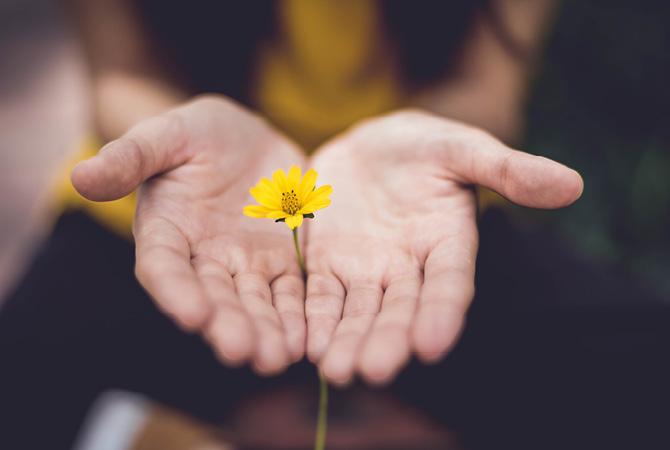 Yogapsychotherapie Steffen Brandt